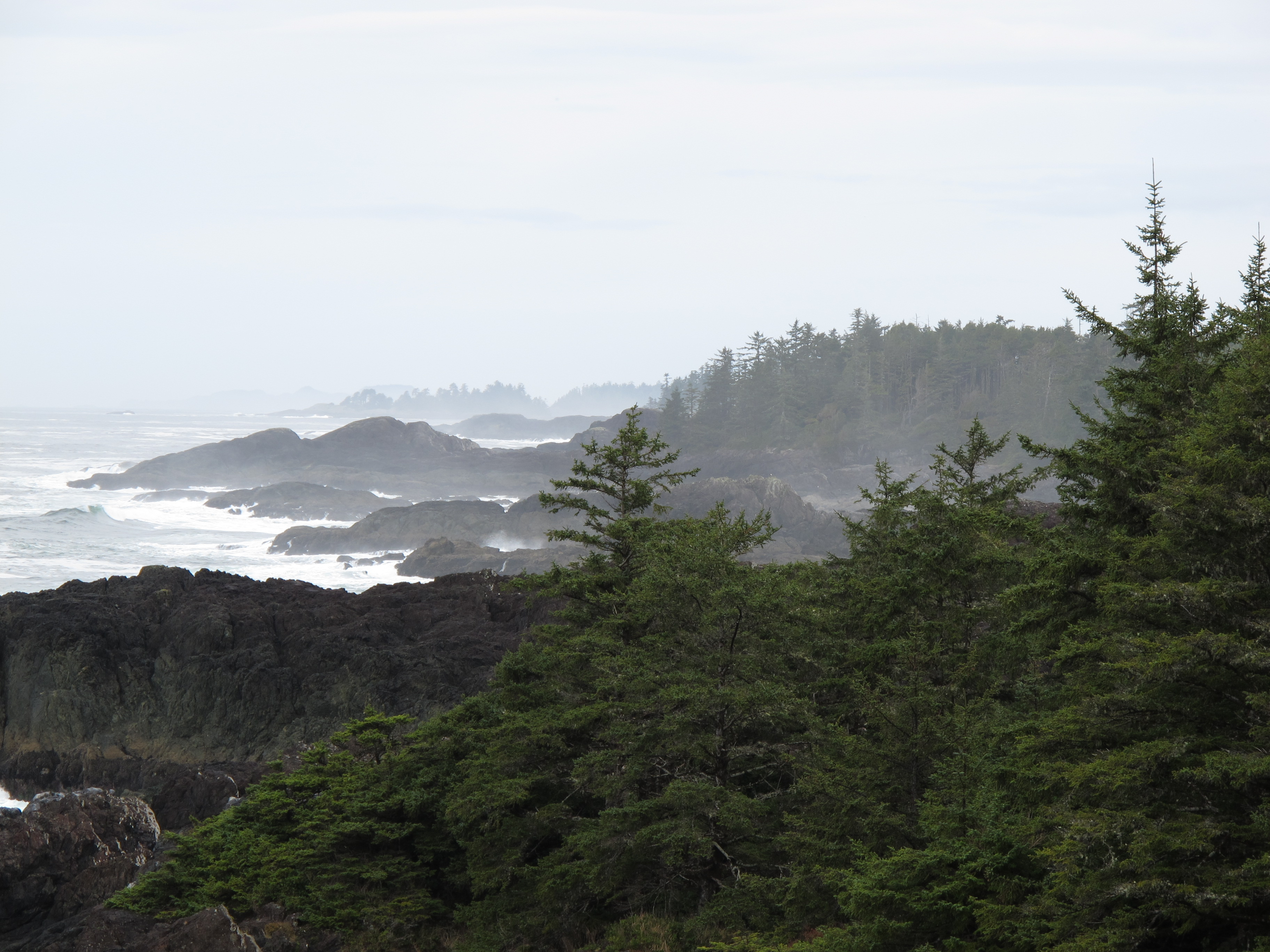 Rocky coastline along the Wild Pacific Trail in Ucluelet, BC