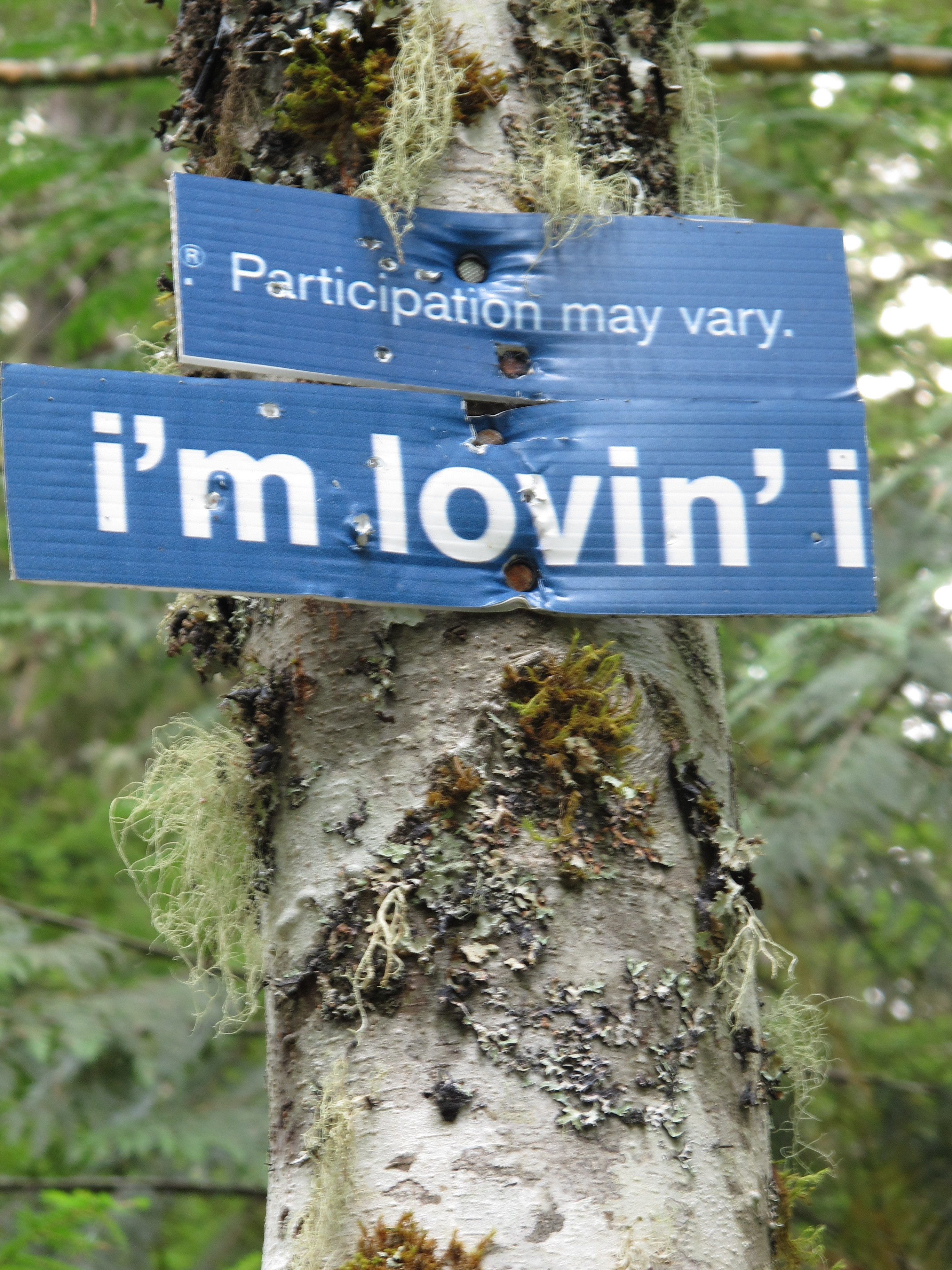"""Signs nailed to a tree: """"Participation may vary"""" and """"I'm lovin' it"""""""