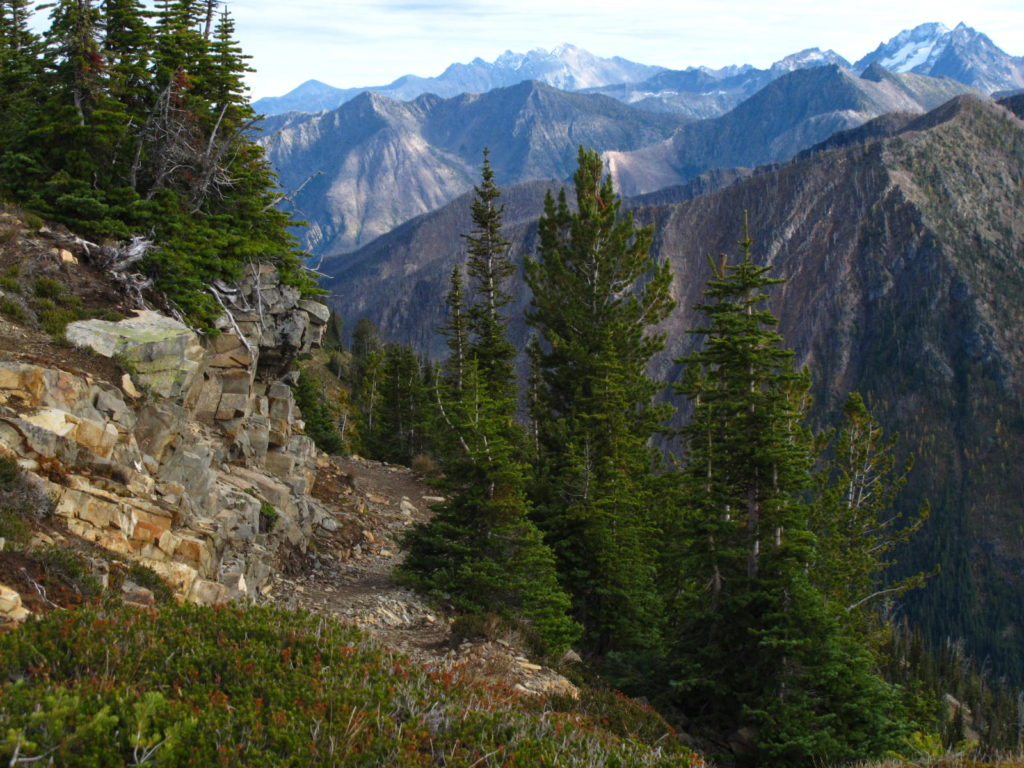 Image of the PCT near Harts Pass