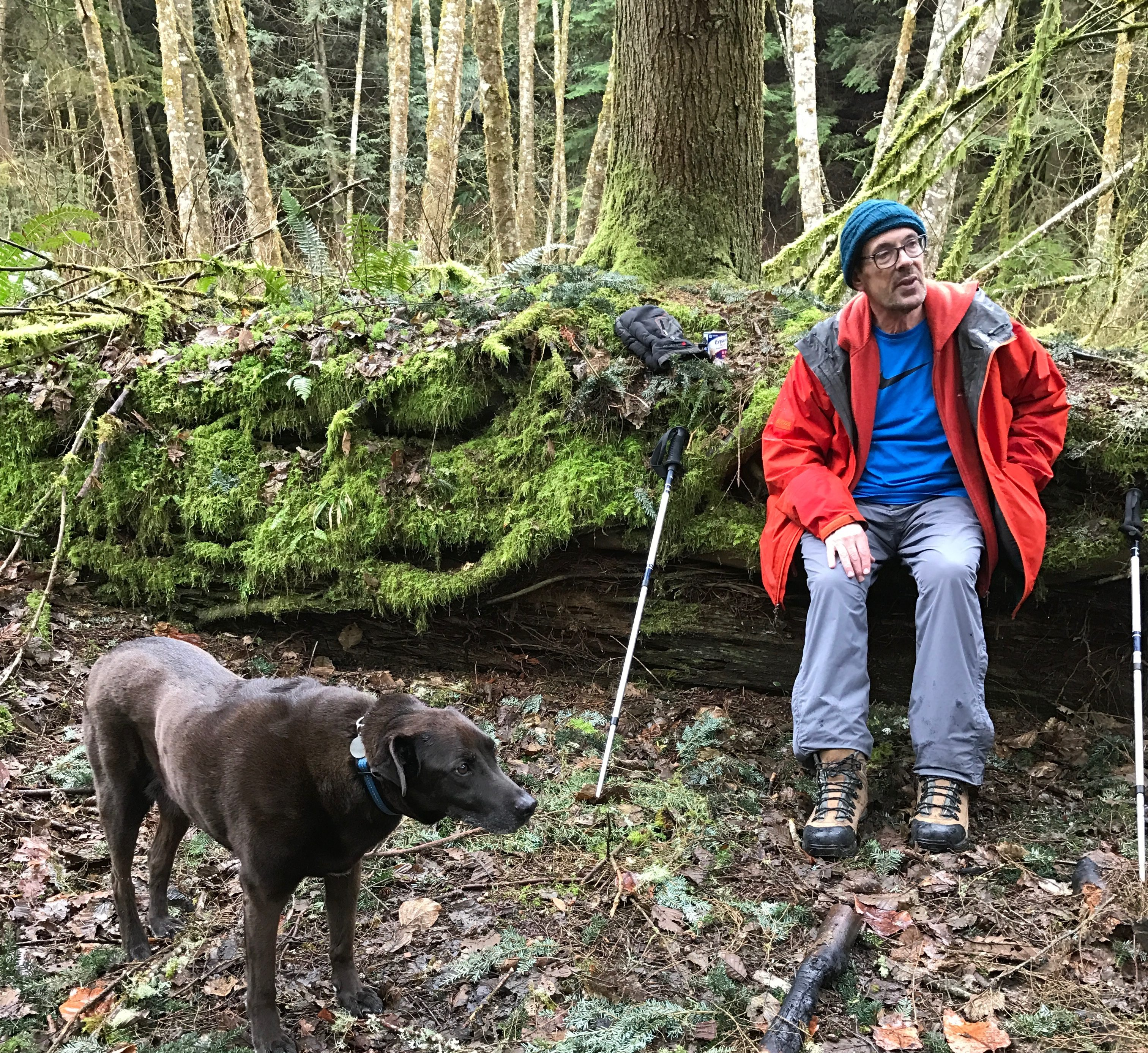 Hikers pause to rest; man and dog sit in the woods