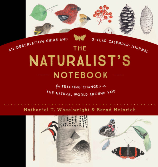 Image of The Naturalist's Notebook, by Nathaniel Wheelright and Bernd Heinrich