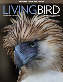 Image of the cover of The Living Bird, the magazine from the Cornell Lab of Ornithology