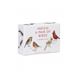 "Image of a memory game called ""Match a Pair of Birds"""